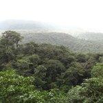 view from the Tenorio Volcano Naitonal Park trail