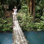 national park trail rustic bridge crossing