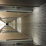 13 floor corridor