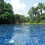 The infinity pool for suite guests