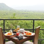 Breakfast view over the teak estate