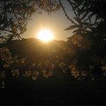 tramonto retro camere