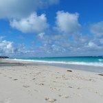 beach at ashram