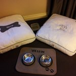 Dog beds and bowls, delivered to the room!
