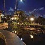 Full moon, hotel garden
