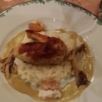 chicken sitting on top of risotto with mushroom sauce, chanterelle and langoustine