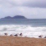 Foto de Pousada Pe na Areia