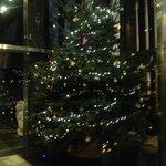 A welcoming Christmas tree