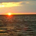 Sunset mit Delfinen