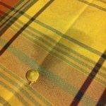 Ranzige vlekken op de bank in de kamer