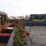 La terrasse des épices