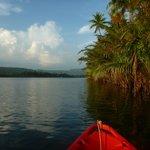 paddling around