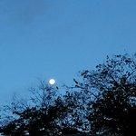 desde temprano se asomaba la maravillosa luna