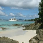 "day trip to St. John ""Honeymoon Beach"""