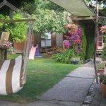 back garden again!