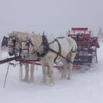 Christmas Eve Sleigh Ride.....Picture Perfect