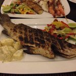 I am sure this is not a snapper. More like a seabass