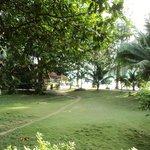 Filtered water view from verandah