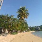 veiw on the beach