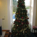 Christmas tree, front lounge.