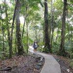 The Big Three trail