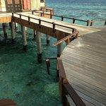 Mauvais entretient général sur l'atoll