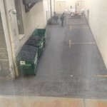 View out first floor window of dumpsters and alley.