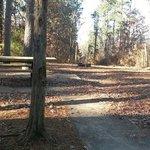 Crowley Ridge State Park