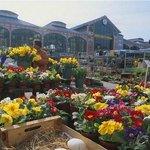Le marché de Wazemmes