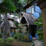 My Coconut Suite