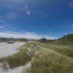 Whaririki Beach - a nearby stunning walk!