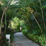 Miles of well maintained trails to walk or jog