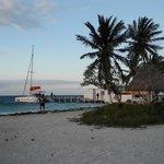 Ragga Empress at Rendezvous Caye, Belize