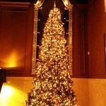 Lobby Christmas Tree