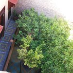 patio dal terrazo