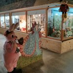 Showing a glimpse of some of the many displays behind the bunny and Dragon!