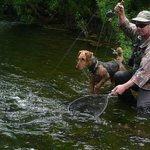 Trout Bohemia fly fishing, the best of New Zealand trout 1