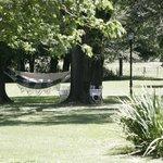 Hammocks!  Did I mention the hammocks?!