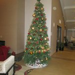 The Christmas Tree in its usual lobby setting!