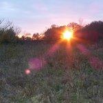 Sunset at the Grange