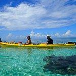 Glover's Reef Kayaking
