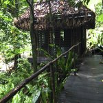 one of the massage huts up in the jungle spa