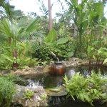 Chi Spa Garden