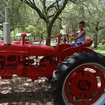 My son playing on a tractor