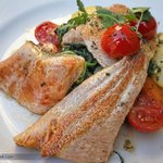 Delicious salmon trout