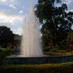 Nature Park Fountain
