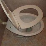 Tampa do vaso sanitário quebrada