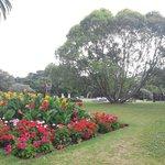 in park 2