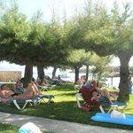 sun bathe area