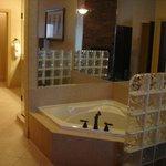 Jacuzzi Mirrored Glass Club Tub